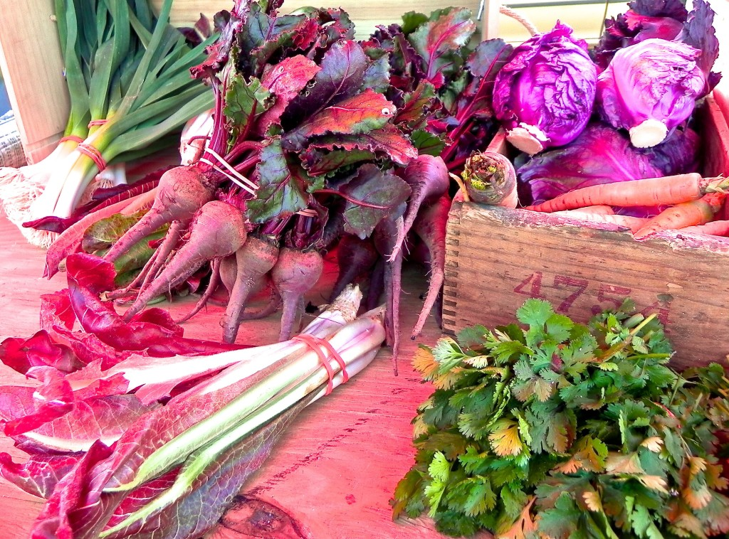 gorgeous vegetables from Tomten Farm in Green Bay, Virginia