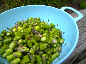 diced fresh asparagus