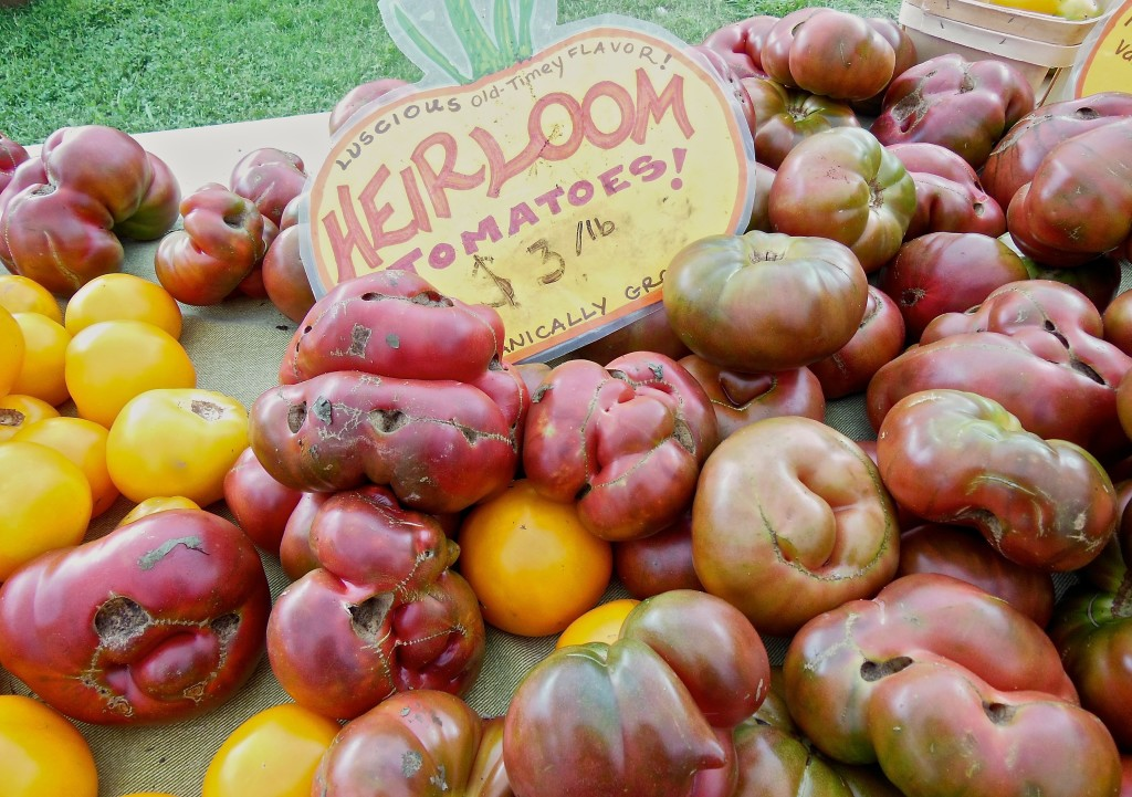 organic heirloom tomatoes from amy's garden
