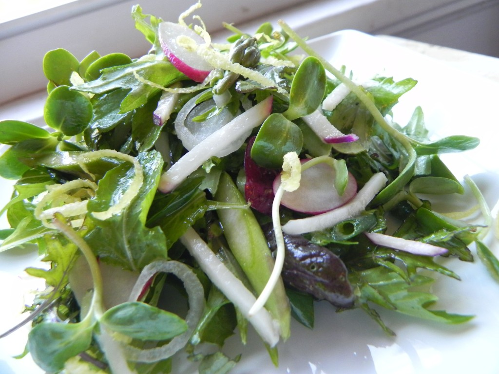 lemon dressed spring salad