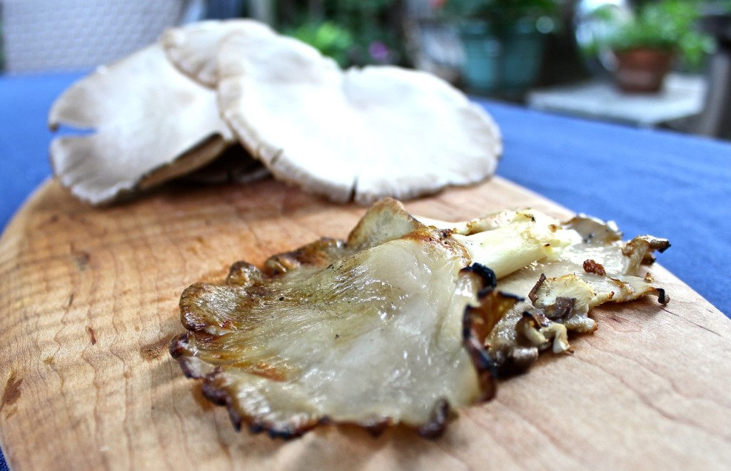 grilled and fresh oyster mushrooms from Pine Fork Farm