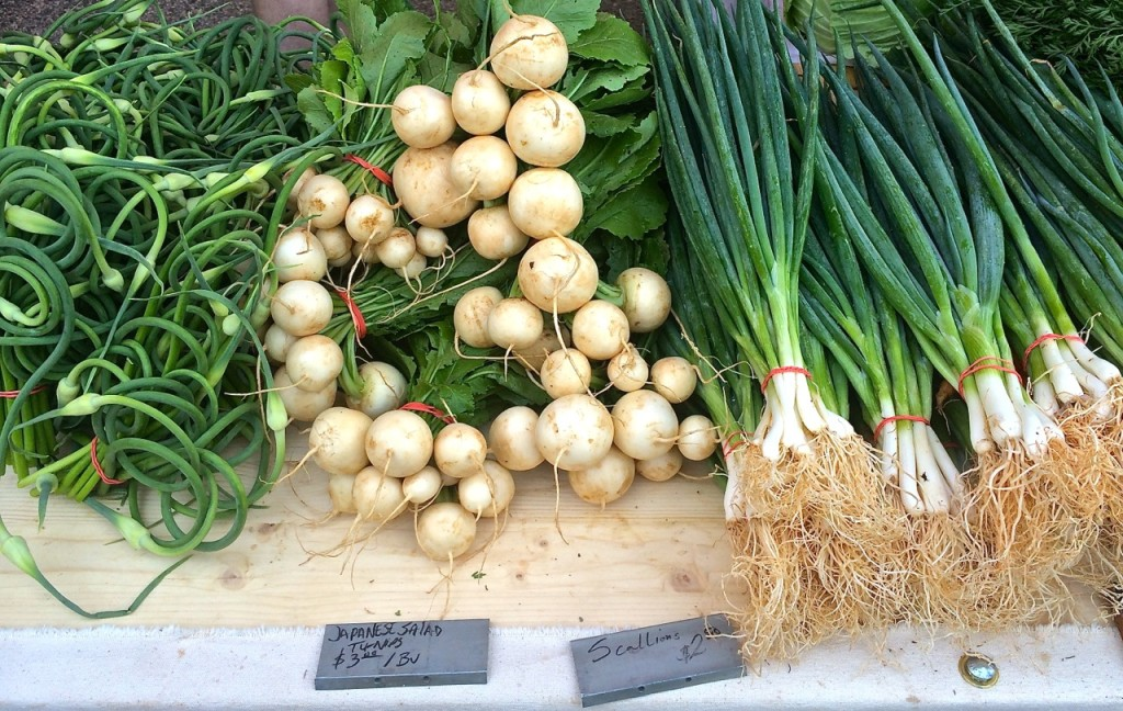 Tomten Farm garlic scapes, salad turnips and spring onions