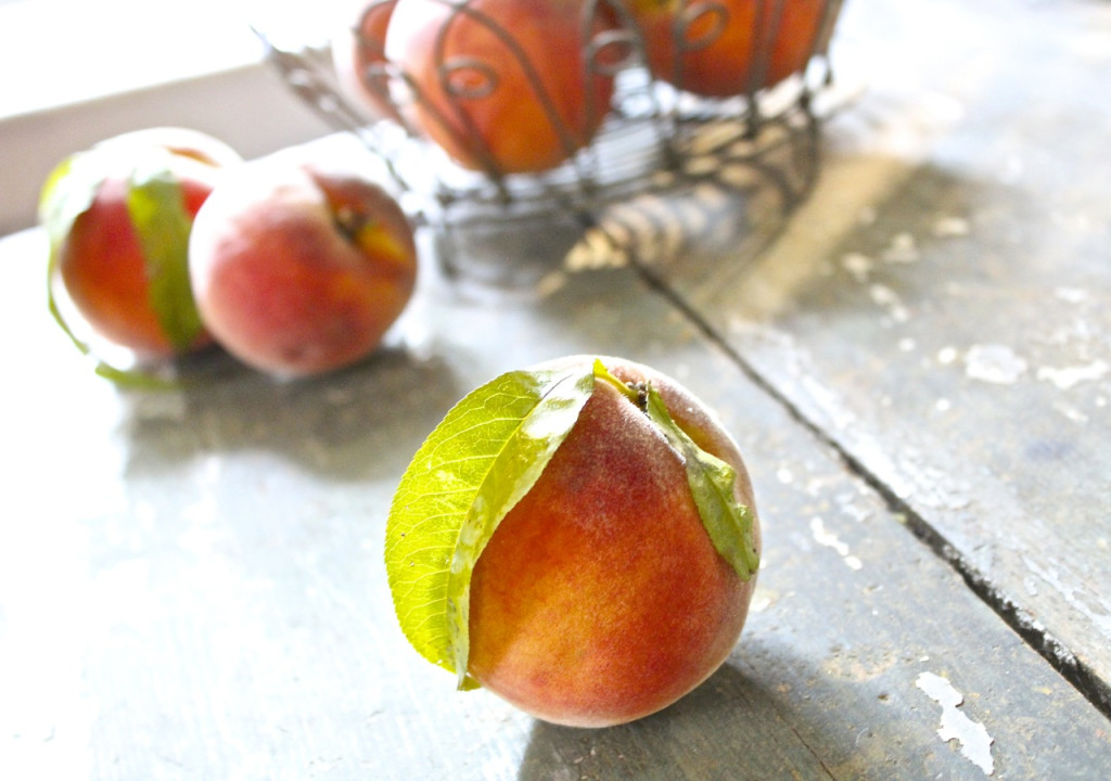 Saunders Brothers perfect peach