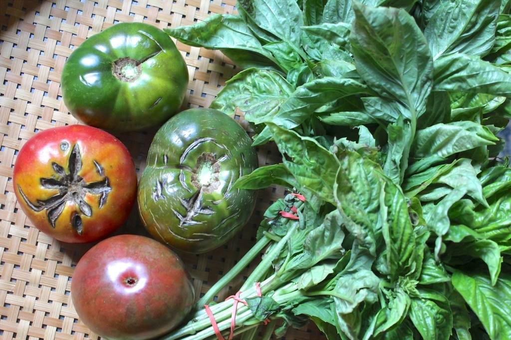 Origins Farm heirloom tomatoes and fresh basil