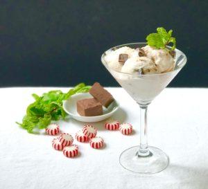 peppermint fudge ice cream